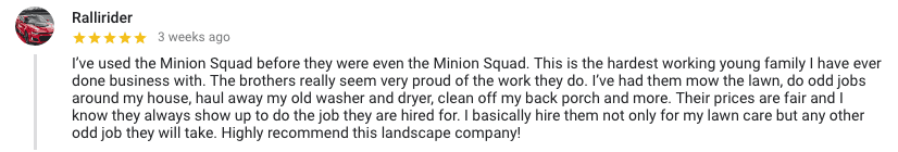 minion squad odd job reviews
